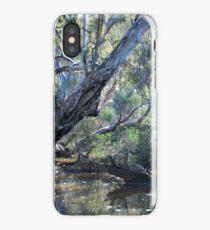 Down at Emu Creek iPhone Case/Skin