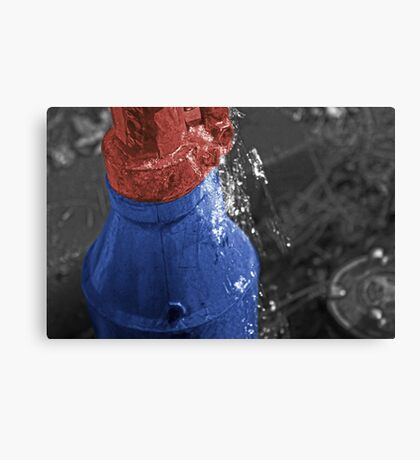 Water pump Canvas Print