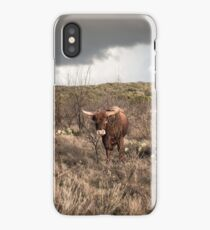 Stare Down - Cow and Catcus in Texas iPhone Case/Skin