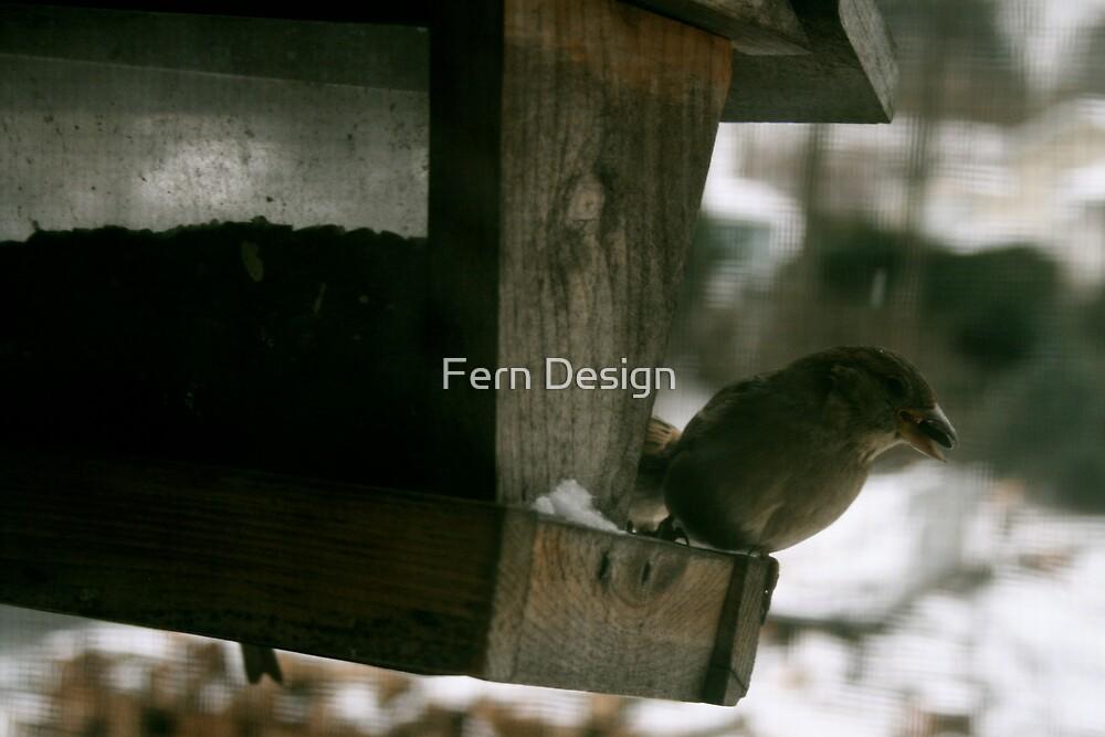 Sparrow by Fern Design