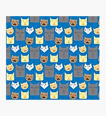 happy sad cats pattern in blue Photographic Print
