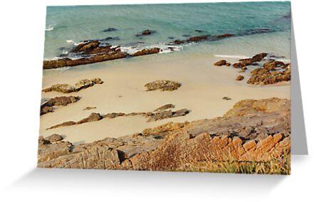 Pebbly Beach © Vicki Ferrari Photography by Vicki Ferrari