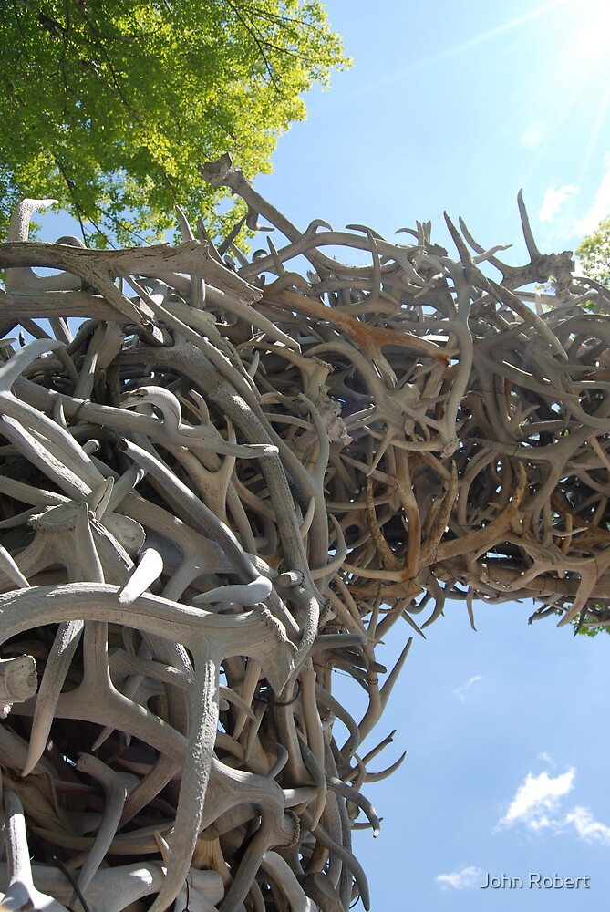 Jackson's Arch of Antler by Bob Moore