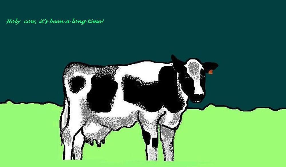 Holy cow card by Carole Boyd