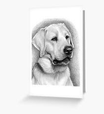 The Labrador Retriever Greeting Card