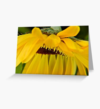 Pedalicious Greeting Card
