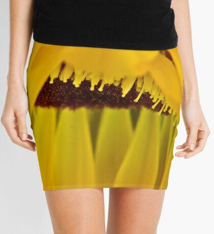 Pedalicious Mini Skirt