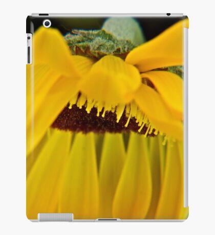 Pedalicious iPad Case/Skin