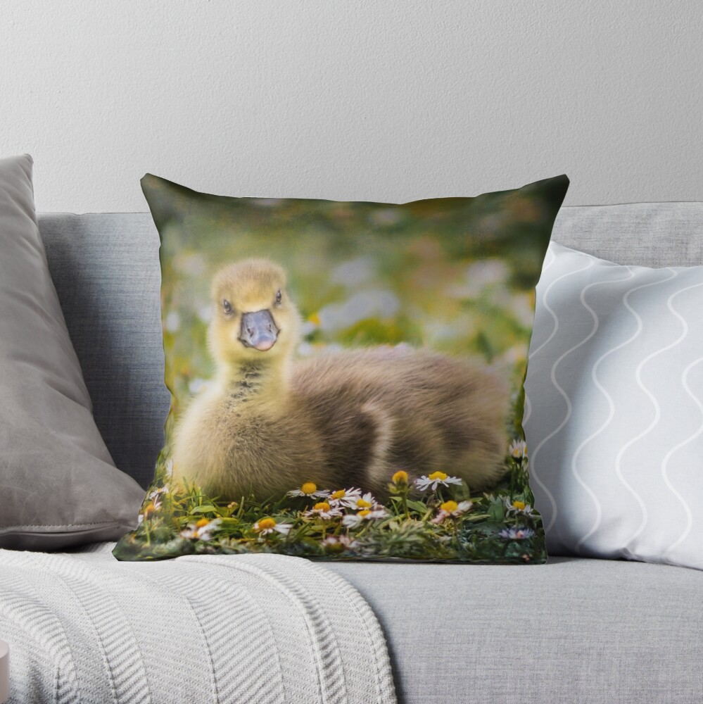 the quizzical gosling Throw Pillow