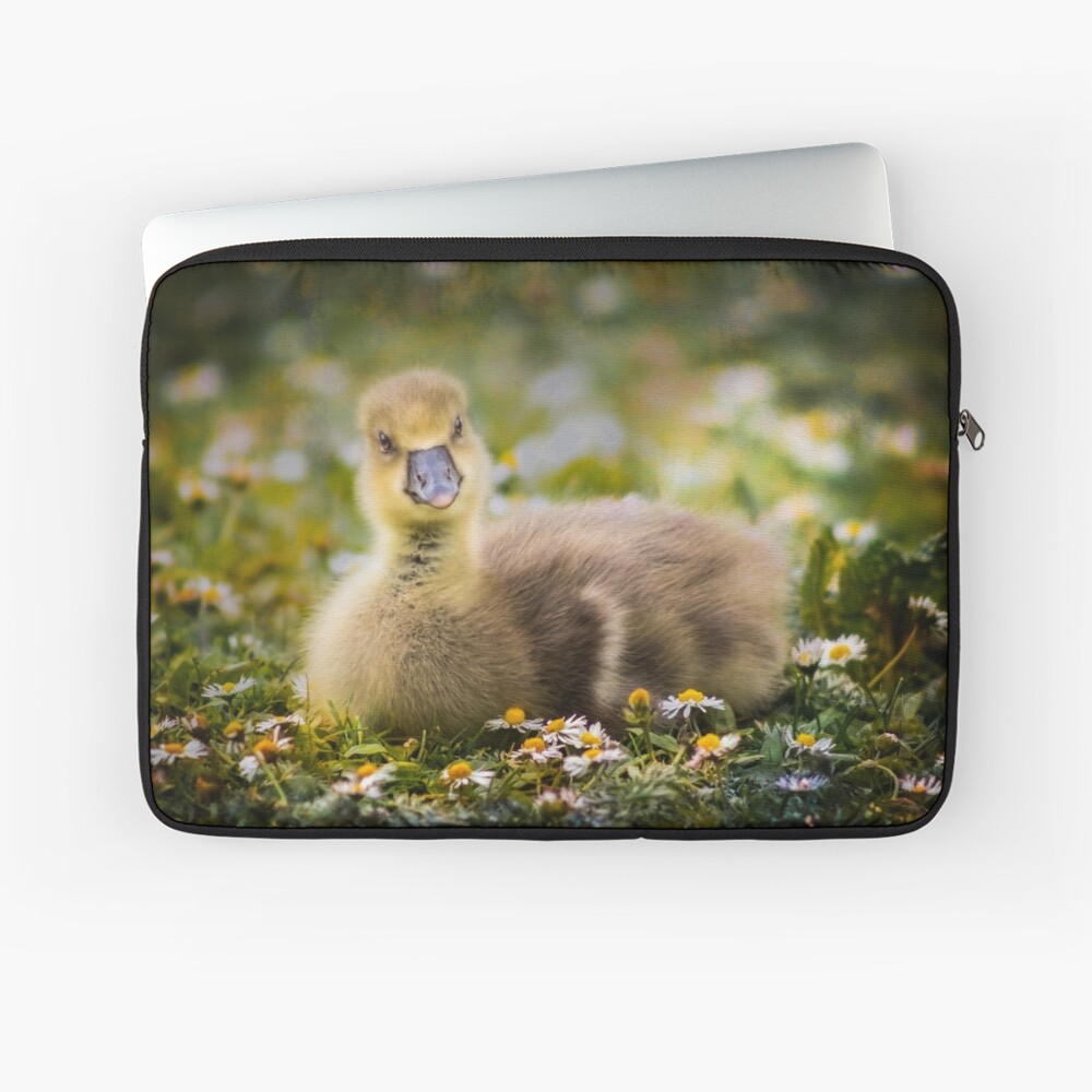 the quizzical gosling Laptop Sleeve