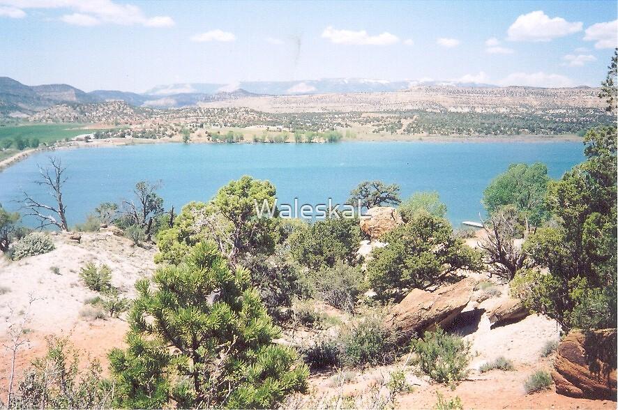 Escalante Utah by WaleskaL