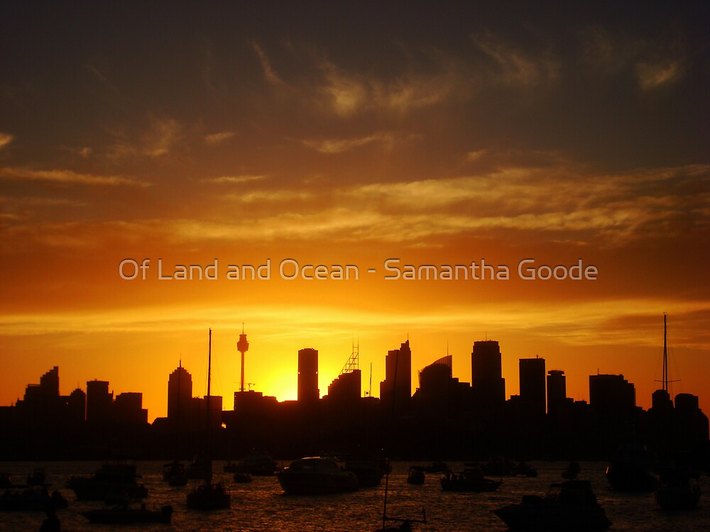 Calmness over Sydney  by Of Land & Ocean - Samantha Goode