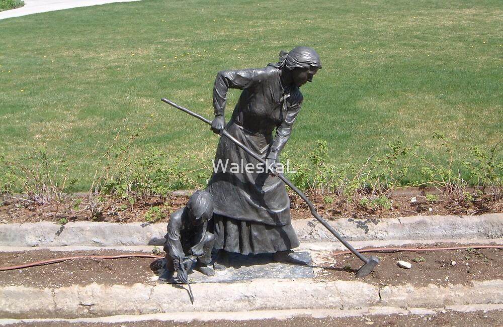 Pioneer Woman  by WaleskaL