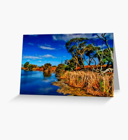 """""""Creekside on a Summer Afternoon"""" Greeting Card"""