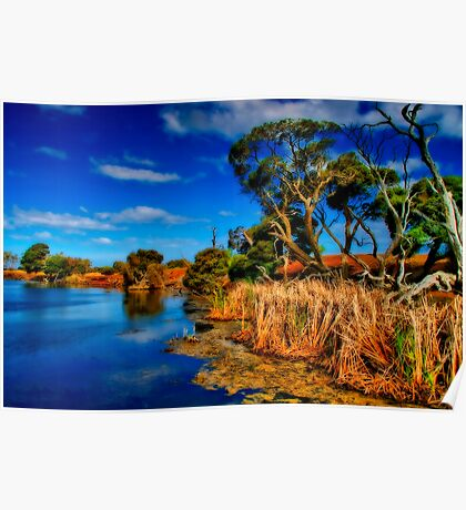 """""""Creekside on a Summer Afternoon"""" Poster"""