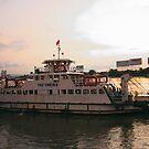 Saigon Dawn by Daryl Davis