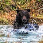 Making A Splash by akaurora