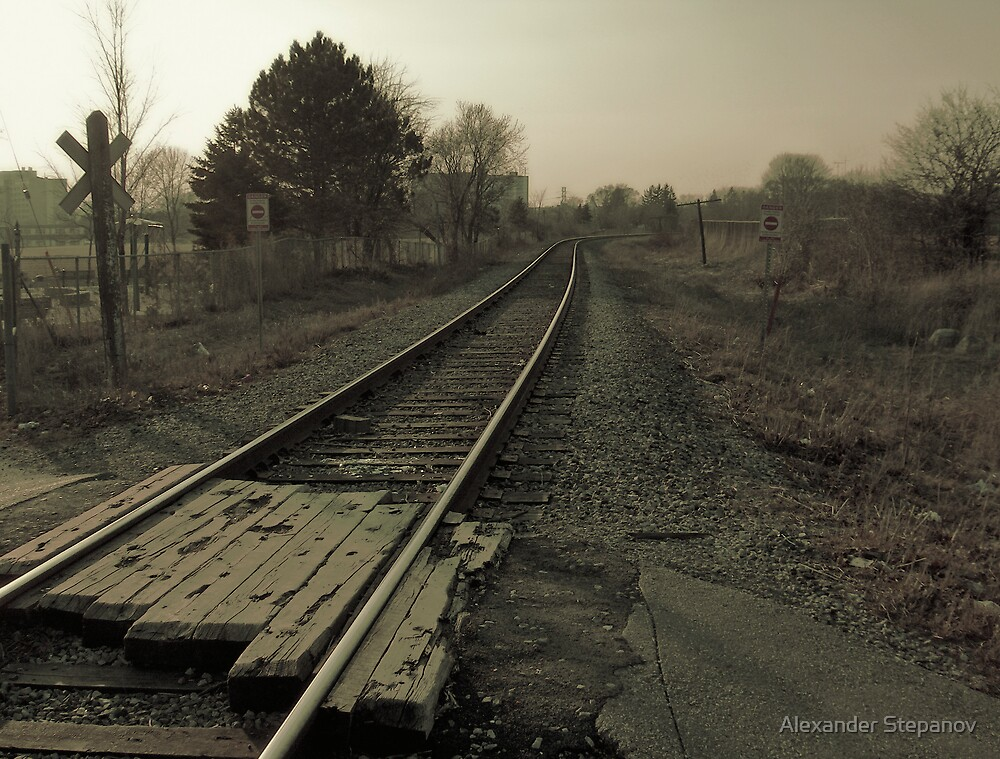 Old Railroad 1 by Alexander Stepanov