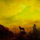 Washington and Mount Ranier by Jeff Burgess