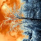 Fire & Ice by tachamot