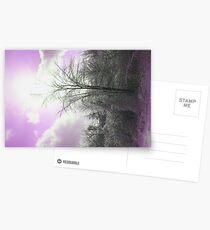 PURPLE SKY Postcards