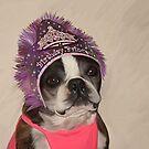 Birthday Princess by Cazzie Cathcart