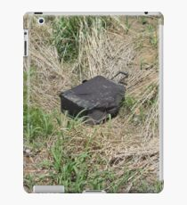 Black Suitcase Lost in the Field iPad Case/Skin
