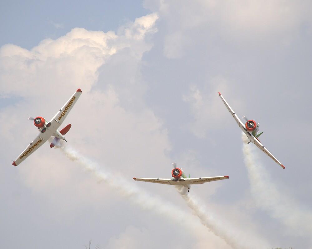 Planes by lorenbo