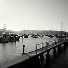 Salt Pan Wharf, Pittwater, NSW, Australia  by Of Land & Ocean - Samantha Goode