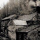 """""""Rock View Cottage"""" by Bradley Shawn  Rabon"""