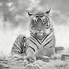 The Majestic One by Pravine Chester