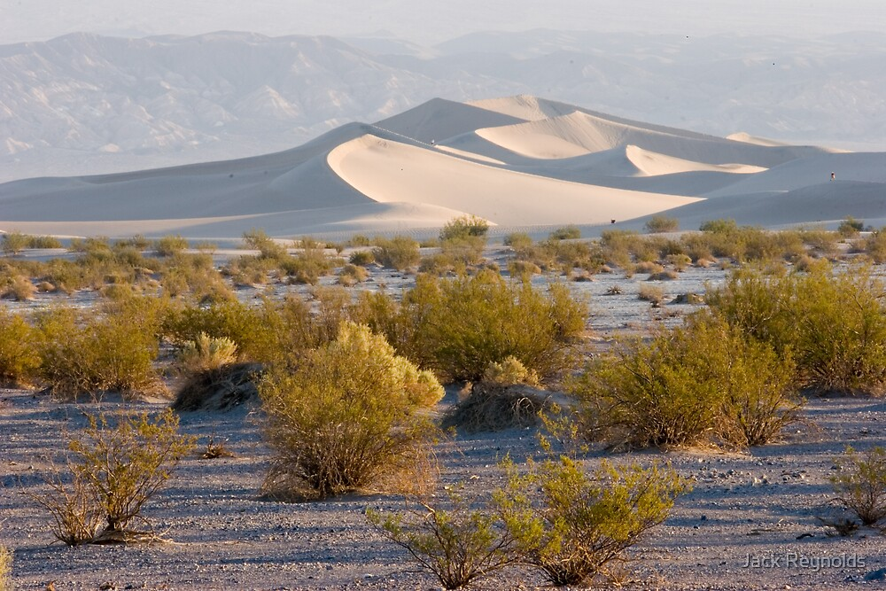 Sand Dunes, Stovepipe Wells, Death Valley by Jack Reynolds