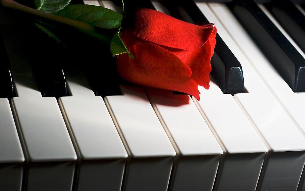 Keyboard romance by mausue