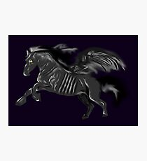 Thestral Photographic Print