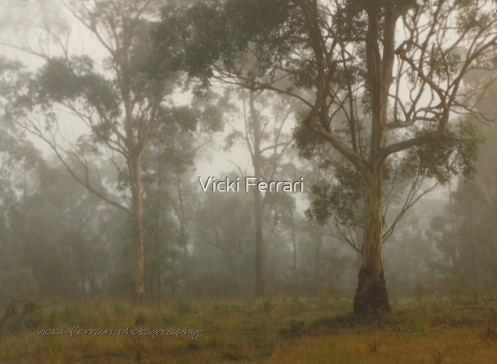 Wilberforce Morning Fog © Vicki Ferrari by Vicki Ferrari