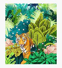 Jungle Tiger Photographic Print