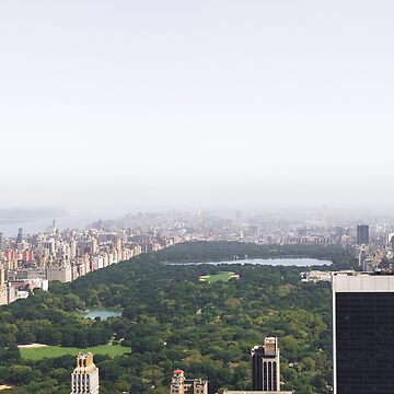 Central Park - New York City by thomasrichter