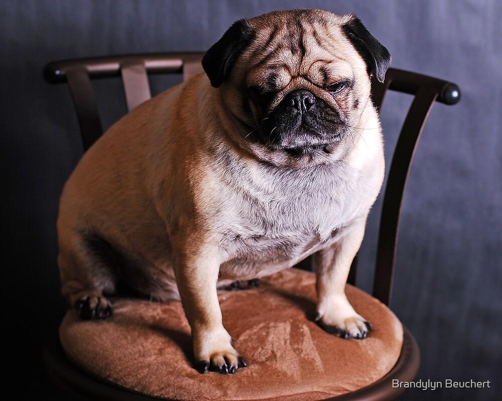 Sad Pug by Brandylyn Beuchert