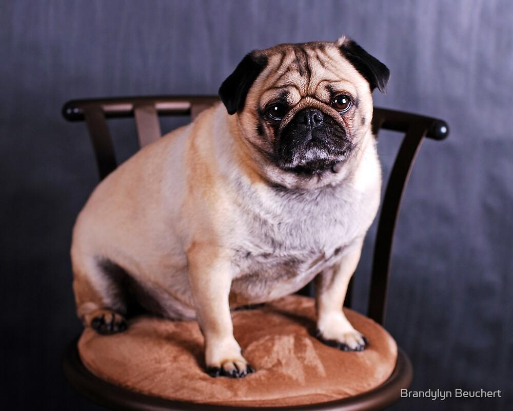 Portrait of a Pug by Brandylyn Beuchert