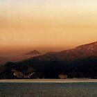 Misty Morning Catalina Island, California USA by Polly Peacock