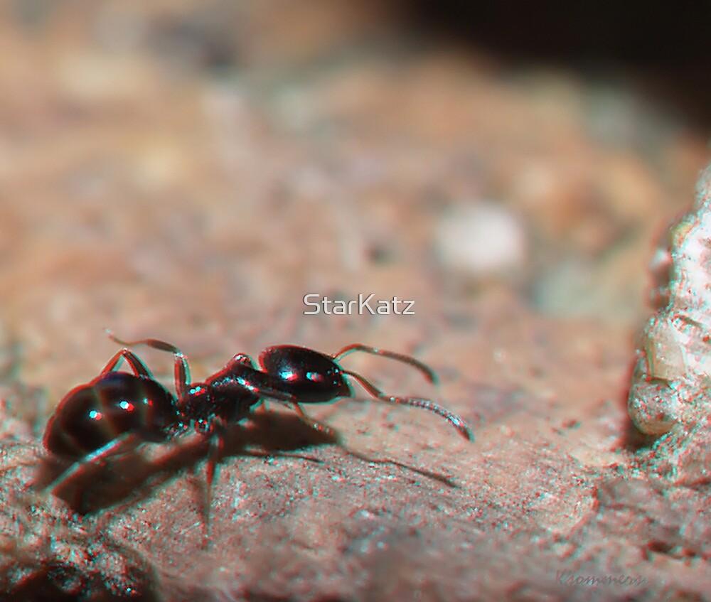 Ant by StarKatz