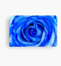 Abstract Macro Blue Rose Canvas Print