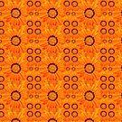 Orange Daisy by FollowingTLites