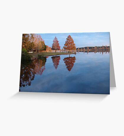 Cypress on Point - Autumn Greeting Card