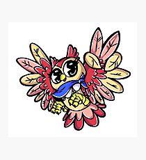 Curi(osity) The Owl! Photographic Print
