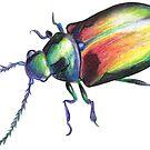 Rainbow Beetle by lysswhitart