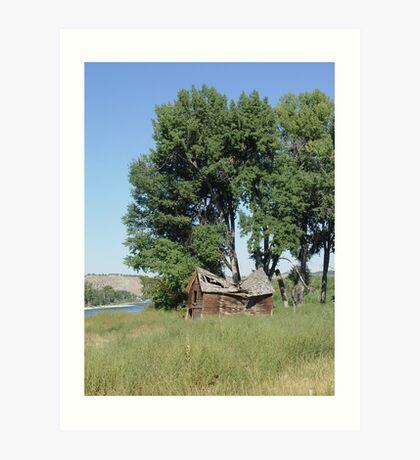 Barn in the Cottonwoods Art Print
