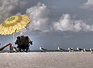 Umbrella by Jeff Clark
