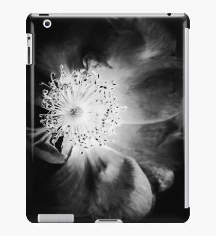 7440-22-4 [iPad cases/skins] iPad Case/Skin