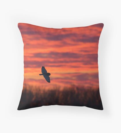 Short-eared owl hunting at sunset Throw Pillow